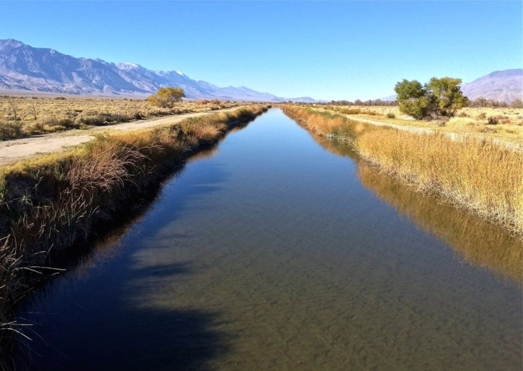 Federally mandated Owens River reclamation.