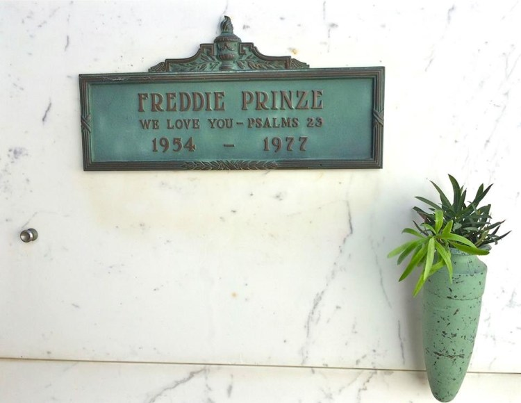 "His future looked bright as the star of ""Chico and the Man"", but he was apparently fighting inner demons. Freddie shot himself at age 23, adding to the long list of Hollywood stars who died young. RIP"