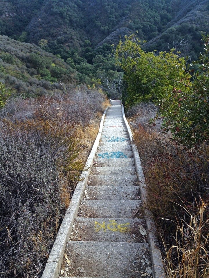 After parking in a very upscale neighborhood within Pacific Palisades, a short hike along an old fire road leads you down to these 500+ steps, where your decent into Naziville begins.