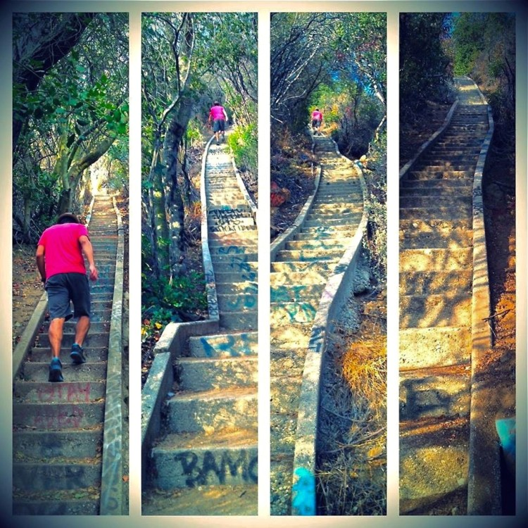 500+ steps are awesome going down but 500+ steps are so not awesome going back up. My inhaler was doing triple time. Due to all the recent exposure in the media, neighborhood opposition has been growing to demolish the remaining structures of Murphy Ranch . I would highly recommend taking a hike down into Rustic Canyon before it all disappears.