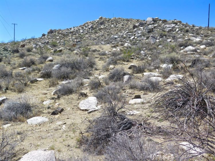 I search a large portion of the hill but was unable to find any evidence that a cemetery was once there.