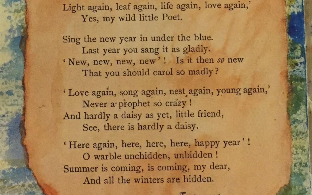 A Poem For Summer.