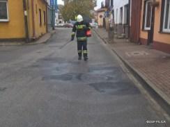 Plama oleju w Pilicy 003