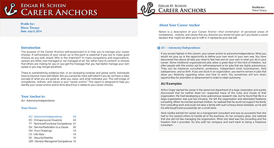 Schein Career Anchor Report