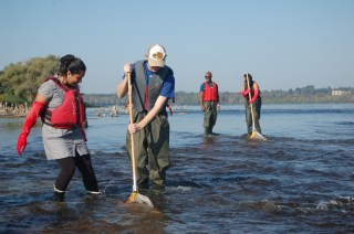 Volunteers Eliza Ali, Brennan Doherty, Jason Pearman and Amy Ede kick net sampling in Remic Rapids (c) Rebecca Spring WWF
