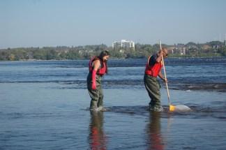 Volunteers sampe Ottawa River (c) Rebecca Spring