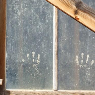 Hand Prints on Window