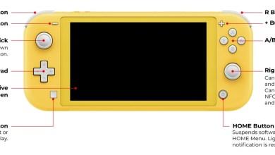 Nintendo Switch Lite : Caractéristiques et Prix en Algérie 5