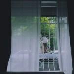 節電対策:朝日が射し込む部屋ではカーテンを半開きにしてみよう