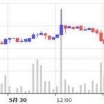 やっちまった、買ったばかりの仮想通貨ネムが急落