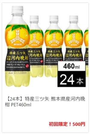 熊本県産河内晩柑 24本 500円