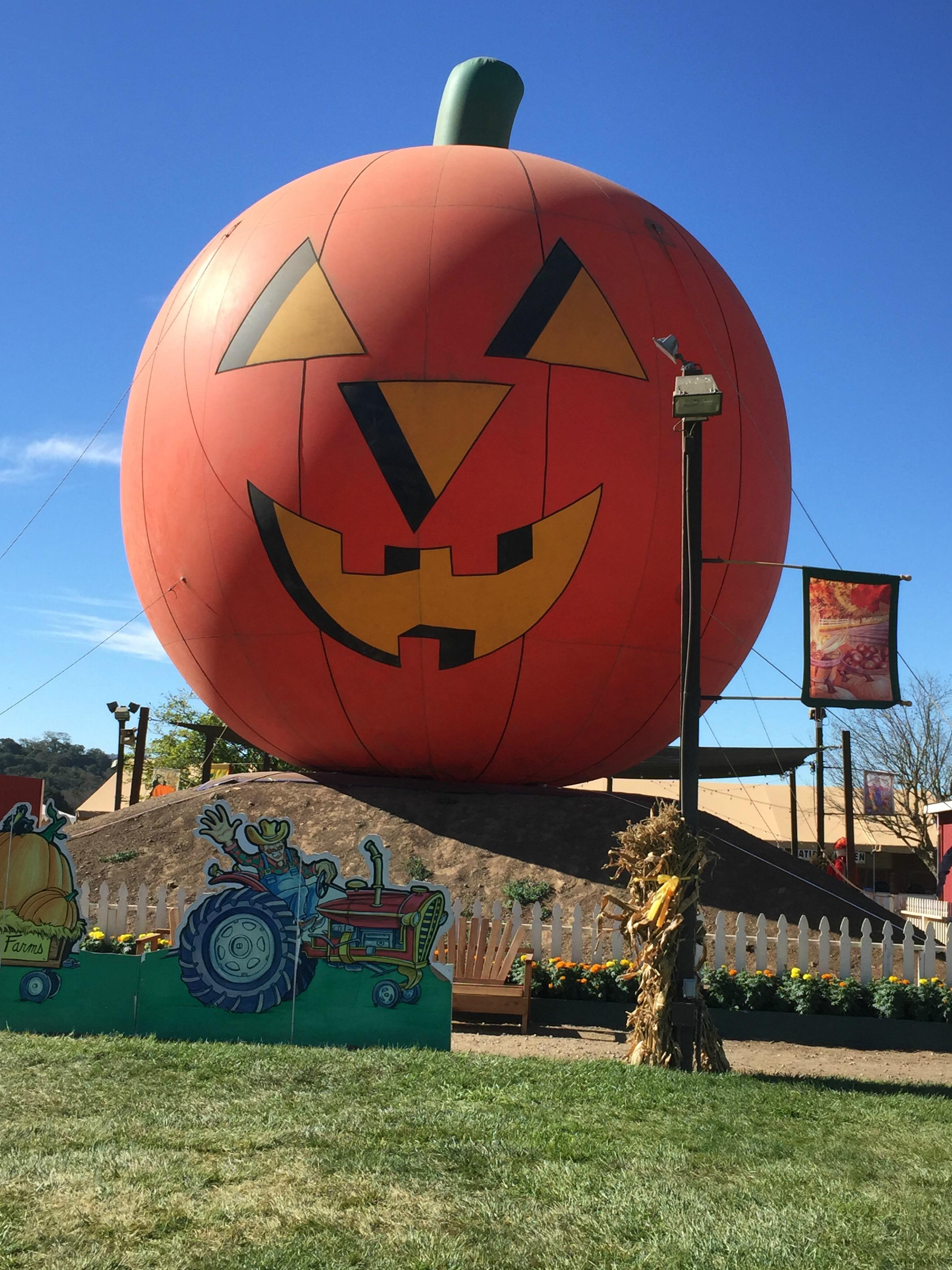 It S The Great Pumpkin Preschool Kids