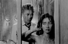 "Kim Jin-kyu and Lee Eun-shim in Kim Ki-young's original ""The Housemaid"" from South Korea"