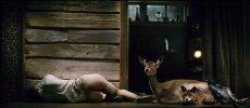 Charlotte Gainsbourg and Willem Dafoe star in Lars von Trier's horror film / psychodrama
