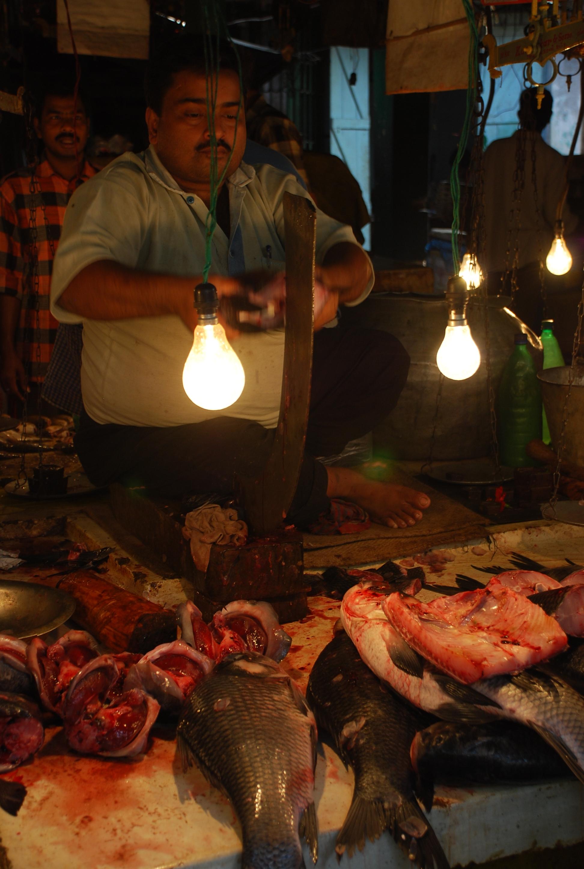 A Kolkata Fish Market