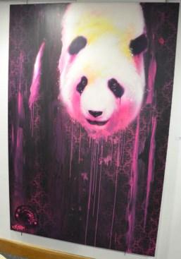panda - kalouf