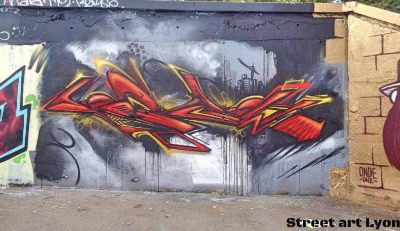inert street art Lyon
