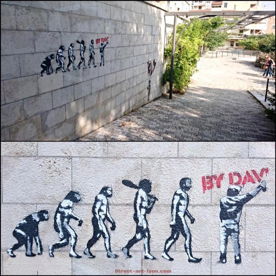 bydav-evolution