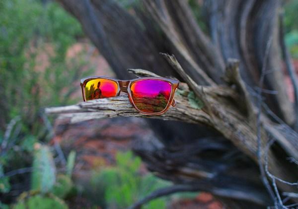 nectar-sunglasses-3