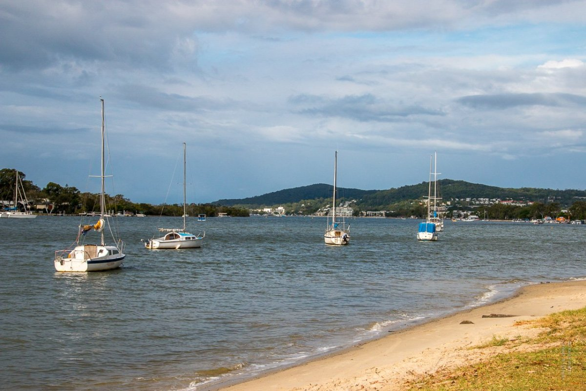 Yatchs lying at achor on the Noosa River