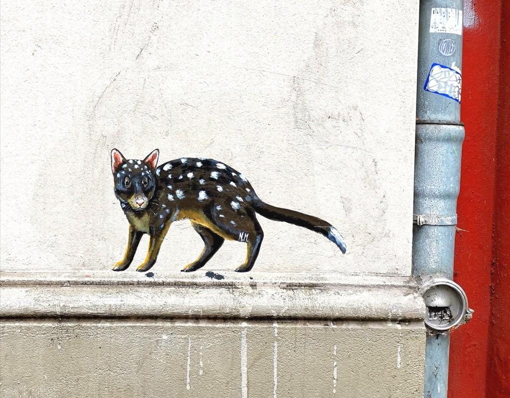 Bild von Tüfelbeutelmarder an einer Hauswand