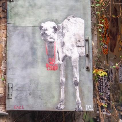 das Kamel von CAZL trägt eine Kamera um den Hals