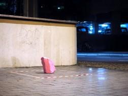 pinker Stein