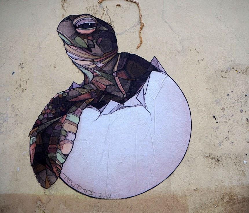 Schildkröte schlüpft