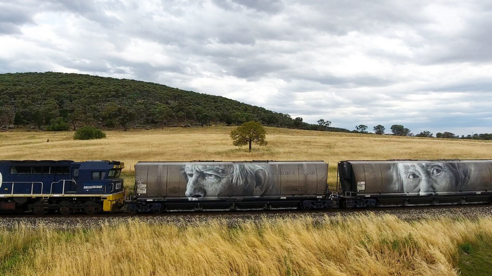 Guido van Helten paints freight trains for The Wanderers series