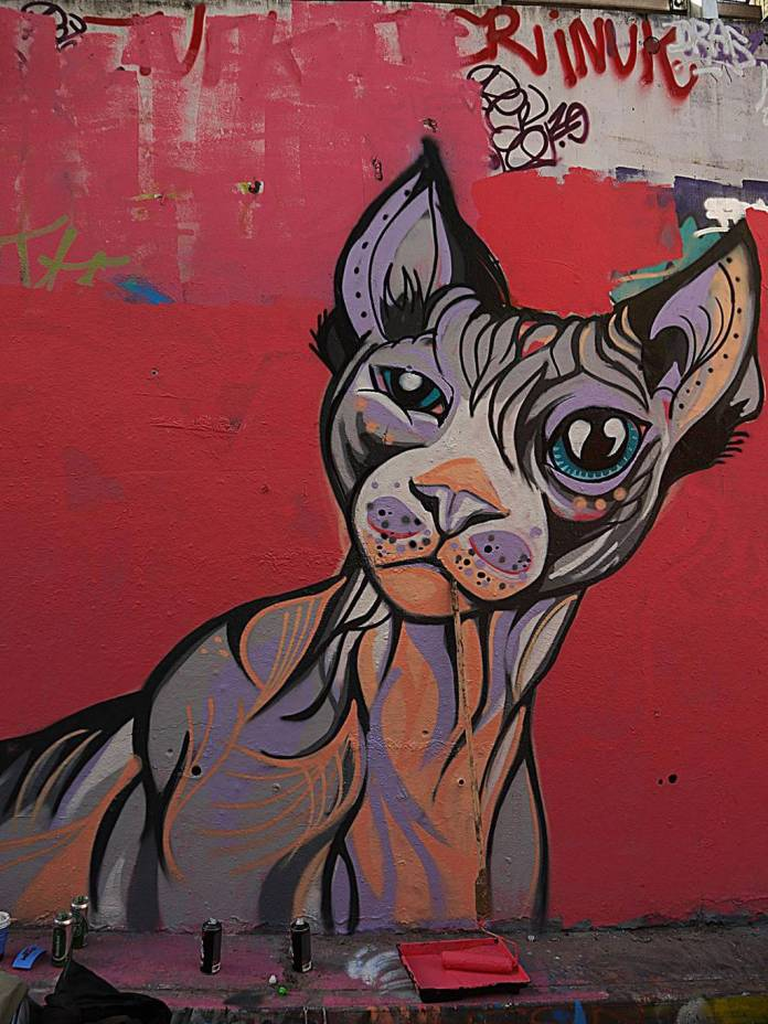 A mural of a cat, by Susie Lowe:Suzko