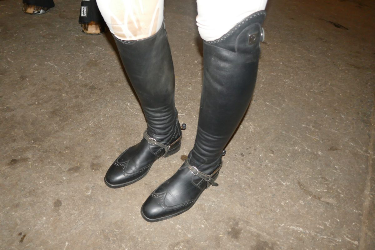 Tucchi Boots - leather riding boots at The Royal