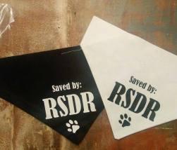 RSDR_Walk_Bandanas