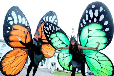 Garden Themed entertainers, butterflies entertainers