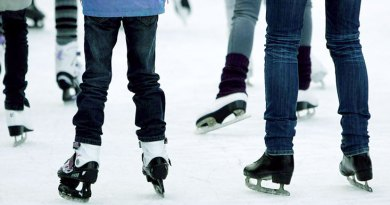 community skate on Family Day