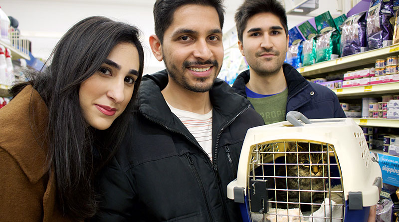 Pet Adoption at Petsmart