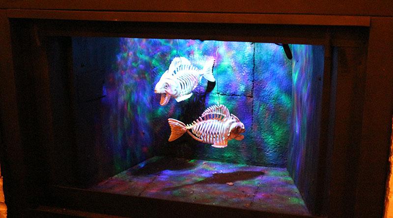 Storm Crown Manor fish