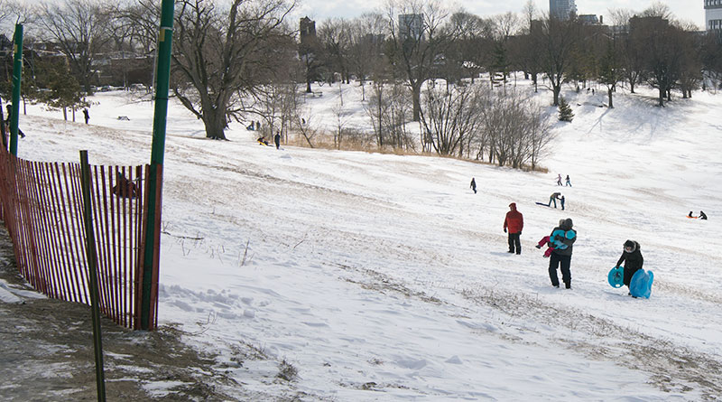 Tobogganing ban posted at top of hill