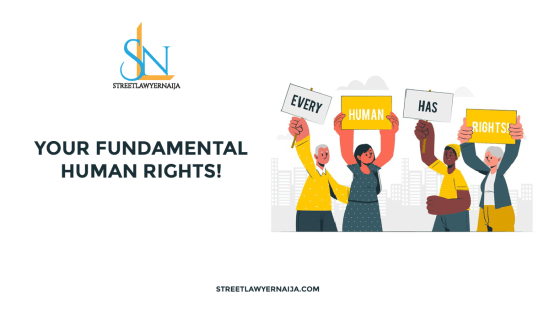 Your Fundamental Human Rights!