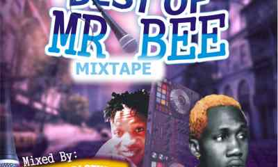 Best Of Mr Bee- Dj Sturmy Paparazy