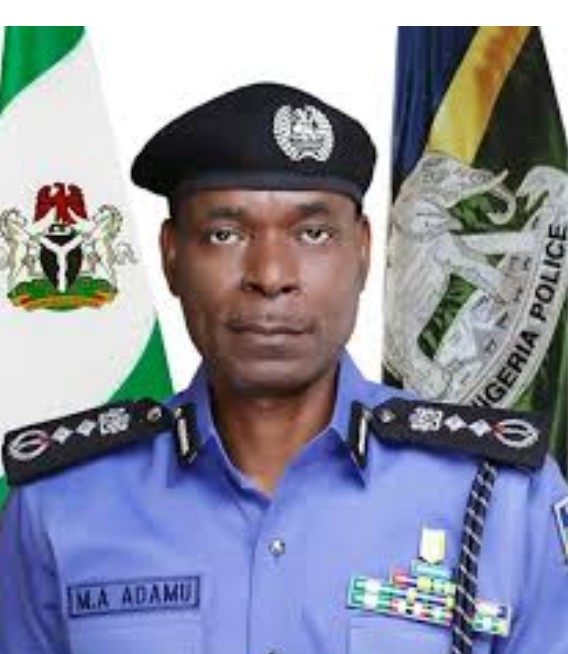 IGP Mohammed A Adamu directive on prohibited firearms gunmen cybercrime