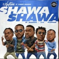 Download DJ Neptune – Shawa Shawa x Larry Gaaga Ft. Olamide, CDQ & Slim Case
