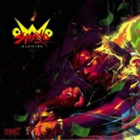 "Download Olamide – ""Owo Shayo"""