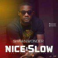 Download Shawn Wonder – Nice and Slow