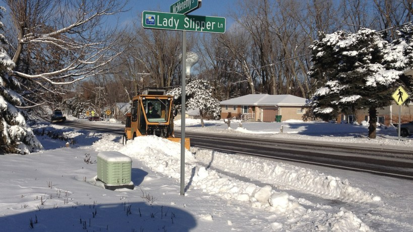 McMenemy Rd in Vadnais Heights - Earlier this year I saw this guy so I know they'll clear that MUP eventually.