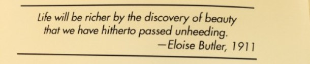 """""""Life will be richer by the discovery of beauty that we have hitherto passed unheeding."""" Eloise Butler, 1911"""