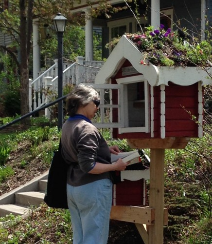 Browsing at a Little Free Library