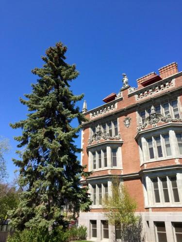 Folwell Hall, University of Minnesota