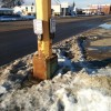 APS beg buttons in snow