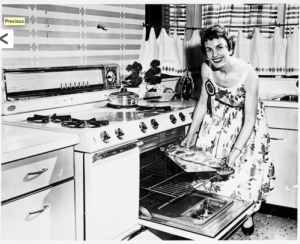 Minnesota Housewife