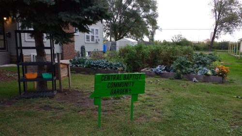 Central Baptist Community Garden in Merriam Park is one of many ways the church brings the community together.